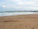 """Ad una spiaggia di Eboli il premio miglior """"struttura animal friendly"""""""