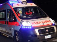 Azzannato al volto da un cane randagio. Giovane di Eboli in ospedale a Napoli per una ferita al labbro