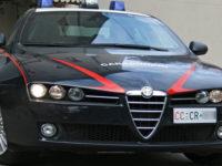 Albanella: carabinieri trovano marijuana e piante di cannabis indica. Un arresto e una denuncia