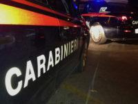 Ladri tentano di rubare in due aziende a Tito Scalo e vengono messi in fuga dai Carabinieri