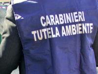 """Operazione """"All Black"""" sul traffico di rifiuti. Arrestato titolare di un'azienda di Satriano di Lucania"""