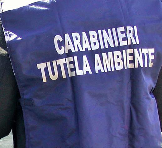 carabinieri noe ambiente nuova 2