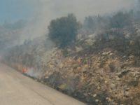 Romagnano al Monte: vasto incendio in località San Nicola