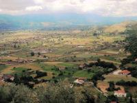 Consigli comunali del Vallo di Diano. Ecco i più e meno giovani