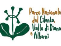 Parco Nazionale. Concorso di idee per realizzare il logo delle due Aree marine protette