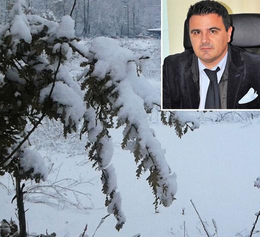 Effetti di neve e gelo sull'agricoltura. Intervista al direttore della Coldiretti Salerno