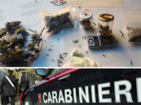 Agropoli: coltiva marijuana e cannabis in un armadietto di casa. Arrestato 31enne