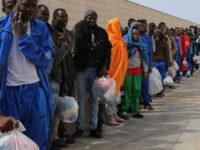 Accoglienza immigrati. Metà degli SPRAR della provincia di Salerno nel Vallo di Diano e Alburni
