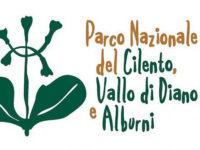 Il Parco Nazionale del Cilento, Vallo di Diano e Alburni all'International Business Summit