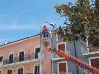 Sant'Arsenio:installato impianto di videosorveglianza a infrarossi per contrastare atti vandalici