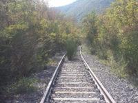 """Comitato Ferrovia:""""Con i soldi per gli svincoli tra Sala e Padula si riporti il treno nel Vallo"""""""