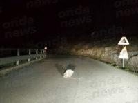 Sassi sulla Strada Provinciale del Corticato. Automobilista evita incidente tra Teggiano e Sacco