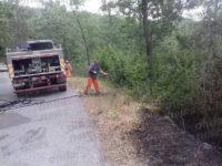 Vasto incendio a Palomonte. In fumo oltre 10 ettari di macchia mediterranea