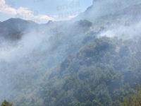 In fiamme le montagne di Sicignano. Decine di ettari di vegetazione andati in fumo