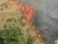 Buccino: vasto incendio in località Pisciarelli manda in fumo 10 ettari di vegetazione