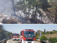A fuoco la vegetazione lungo il Raccordo Sicignano-Potenza. I Vigili del Fuoco evitano il peggio