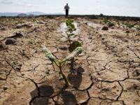 Allarme siccità. Il Comune di Auletta chiede lo stato di calamità naturale