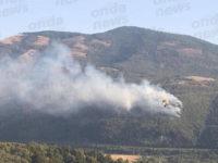 Vasto incendio a Sicignano degli Alburni. Bruciano numerosi ettari di bosco e vegetazione