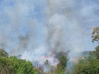 Bruciano le montagne degli Alburni. In fiamme macchia mediterranea a Sant'Angelo a Fasanella