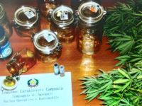 Agropoli: scoperto a coltivare cannabis indica in un terreno abbandonato. Denunciato 29enne