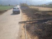 Sala Consilina: incendio in località Sant'Agata. Le fiamme avvolgono pali della Telecom