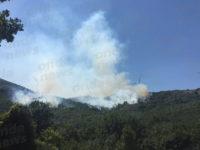 Continua a bruciare vasta area tra Brienza e Sant'Angelo le Fratte. Si lavora per domare le fiamme