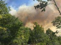 Incendio tra Brienza e Sant'Angelo le Fratte. Canadair in azione per la bonifica dell'area