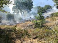 Bruciano le località Castagneto e Calvario a Polla. In pericolo una masseria tra la vegetazione