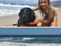 "Palinuro: cane ""eroe"" salva bambina di 8 anni in mare"