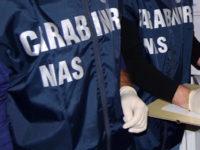 Tonnellate di fertilizzanti ricettati e contraffatti. Maxi sequestro dei Nas in due negozi a Campagna