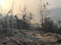 Incendi e siccità a Roscigno.La vicinanza alla comunità e al Sindaco del Generale Lorenzo Dionigi