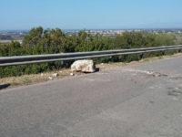 Capaccio: riapre al traffico la SP13/a dopo la messa in sicurezza del costone roccioso