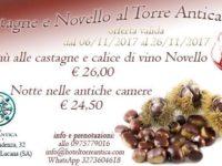 Fino al 26 novembre – Castagne e vino novello al Villa Torre Antica di Atena Lucana