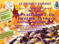 """Sassano: il 5 novembre """"Due castagne e un bicchiere di vino"""" insieme alla Proloco"""