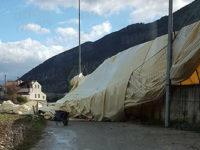 Forti raffiche di vento nel Vallo di Diano. Danni, alberi abbattuti e disagi alla circolazione