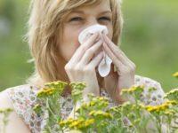 Giornata Nazionale Polline. Al Centro di Allergologia dell'Asl Salerno gadget per i soggetti allergici
