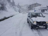 Caggiano: alberi cadono a causa della neve e tranciano i cavi dell'elettricità e del telefono
