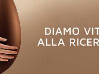 Domani l'uovo di Pasqua AIL nelle piazze del Vallo di Diano a sostegno della ricerca sulla leucemia