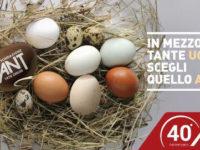 Uova di Pasqua solidali. Banca Monte Pruno e Fondazione Ant insieme per offrire cure mediche domiciliari