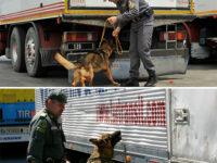 Nasconde hashish nel camion tra capi di abbigliamento. Denunciato 45enne siciliano