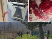Orrore a Sanza. Cane ucciso con un colpo di fucile al volto