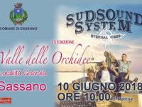 """I Sud Sound System protagonisti del """"Gran Finale nella Valle delle Orchidee"""" il 10 giugno a Sassano"""