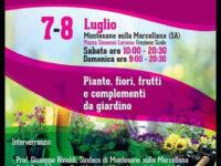 """A Montesano la 2^ edizione della Mostra Mercato """"I Colori dell'Estate"""""""