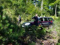 Ritrovato sano e salvo l'anziano di Vallo della Lucania scomparso sul Monte Gelbison