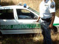 Scoperti dalle Guardie Ambientali ad abbandonare rifiuti lungo la litoranea ad Eboli. Sanzionati