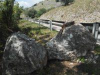 """Caduta massi tra Monte San Giacomo e Sassano. Pellegrino:""""Chiediamo intervento urgente alla Provincia"""""""