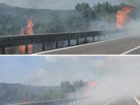 Incendio lungo la Strada Statale Bussentina 517. Intervengono i Vigili del Fuoco