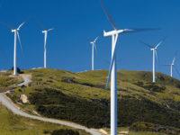 La Regione autorizza la realizzazione di un parco eolico a Valva.L'Ente Riserve ne chiede la revoca