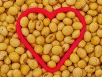 Farmacia 3.0 – la soia protegge il cuore in menopausa