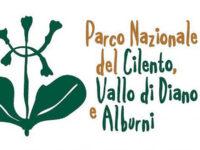 Parco Nazionale. Domani a Vallo della Lucania la presentazione del nuovo Polo Museale
